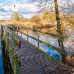 Holzbrücke über Altarm der Schussen; strahlend blauer Himmel über dem Naturschutzgebiet Eriskircher Ried am Bodensee (Foto: JM Soedher)
